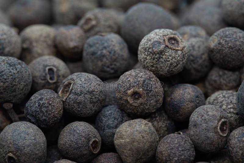 Куча семян черного перца стоковая фотография rf