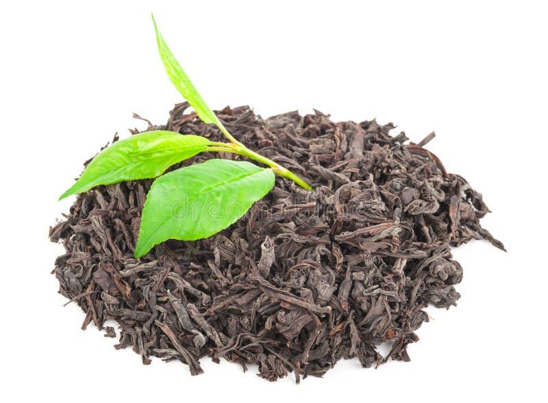 Download Куча сухого черного чая с листьями зеленого чая Стоковое Изображение - изображение насчитывающей листья, традиционно: 81810827