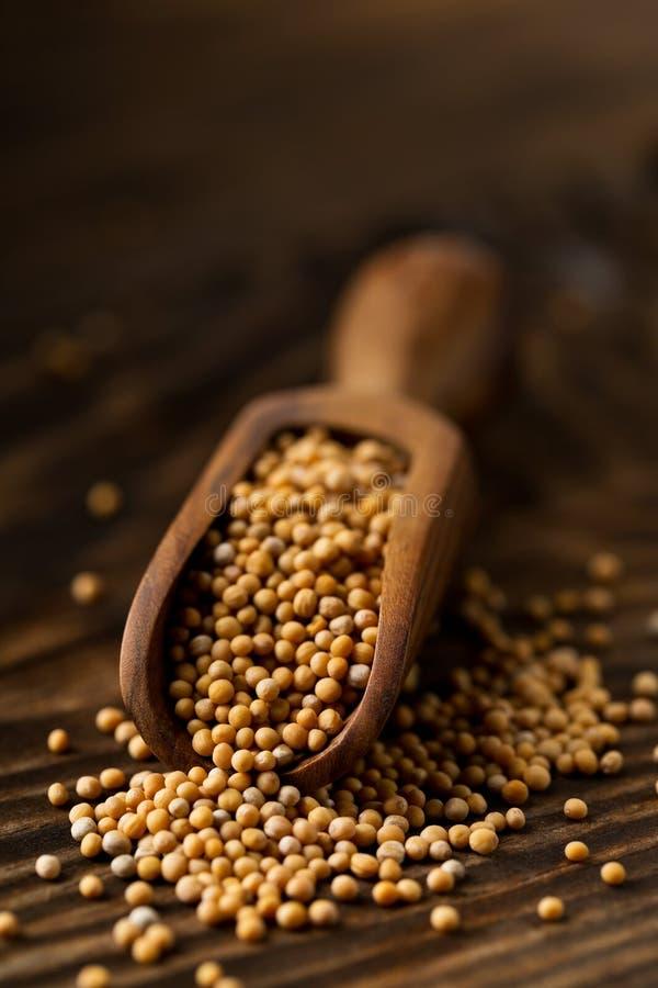 Куча сырцовых, unprocessed стерженей горчичного зерна в деревянном ветроуловителе дальше стоковые фотографии rf