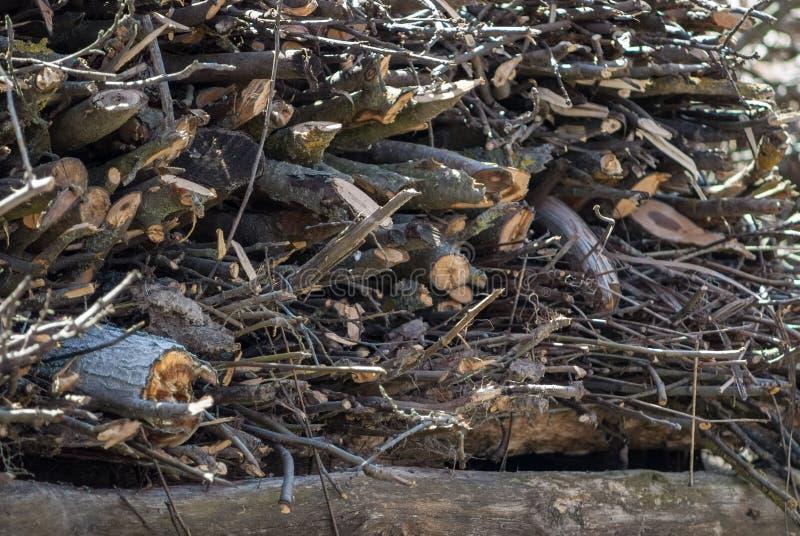 Куча швырка Подготовка швырка на зима Справочная информация Швырок в швырке леса на камине располагаясь лагерем области стоковые фото