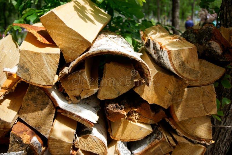 Куча швырка подготовленная для разжигать во время пикника в деталях парка или леса дружественных к Эко и естественных Располагать стоковые изображения
