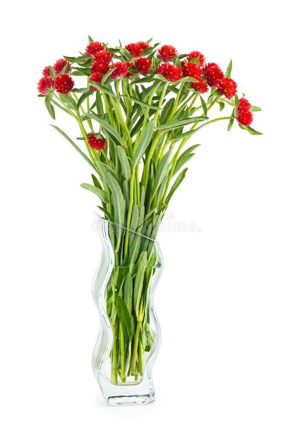 Кучка красных цветов в стеклянной вазе стоковая фотография rf