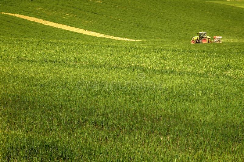Культивируемое поле в ` Orcia Val d, Тоскане, при трактор работая земля 03/25/2016 стоковое фото rf