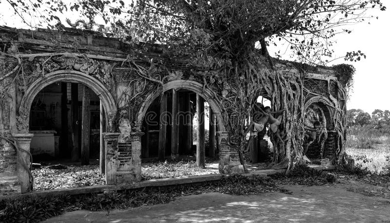 Культурное наследие Tien Giang стоковая фотография rf