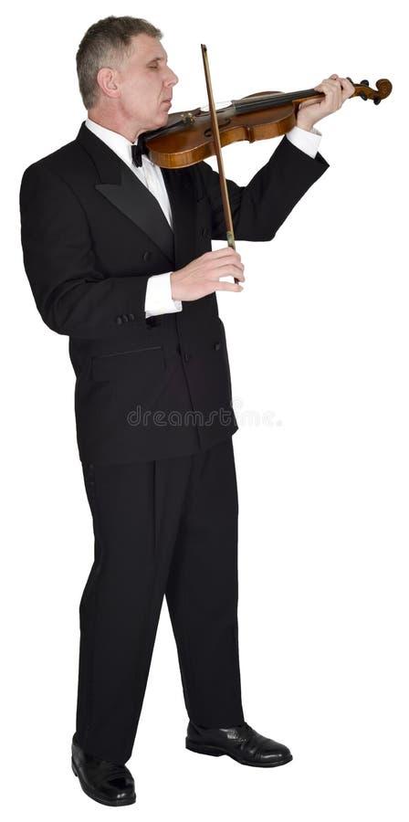 Классическая музыка скрипки, Muscian, скрипач, изолированный музыкант, стоковые изображения rf