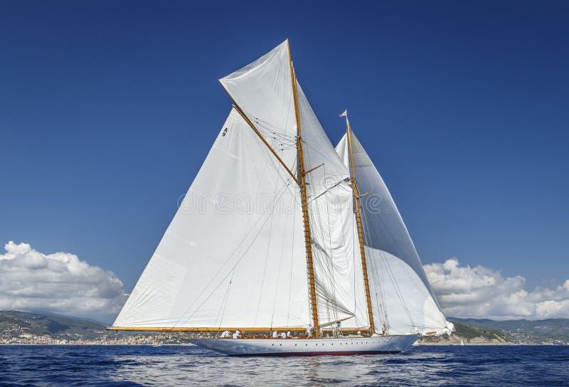Классическая регата яхты - Shooner ELENA стоковая фотография