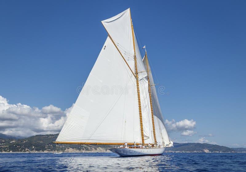 Классическая регата яхты - Shooner ELENA стоковые изображения