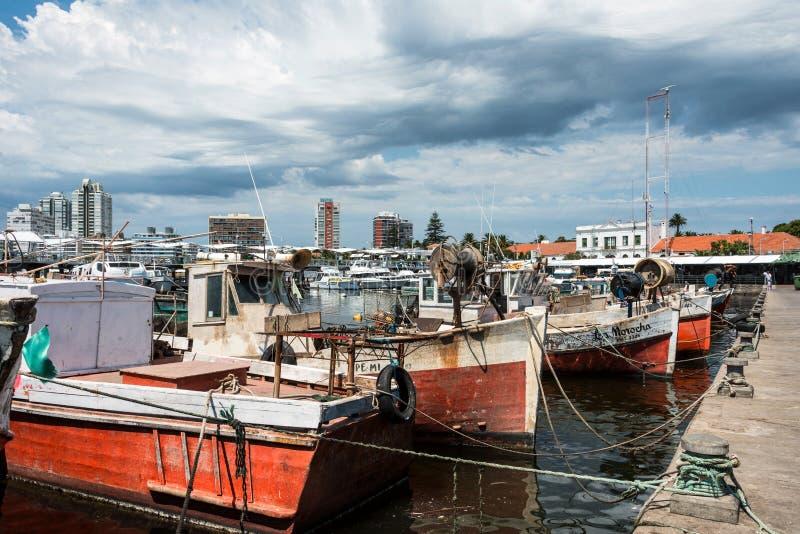 Классические красные рыбацкие лодки причаленные перед яхтами стоковая фотография
