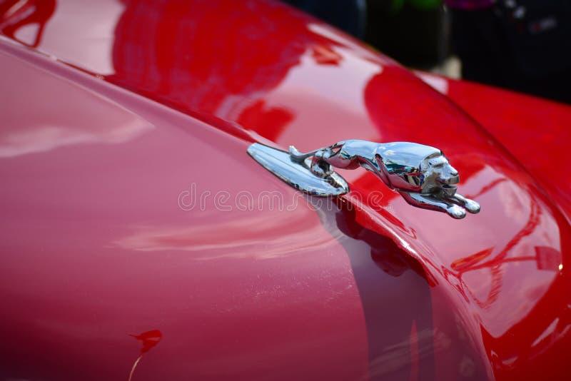 Классический клобук красного цвета орнамента клобука льва автомобиля стоковое изображение