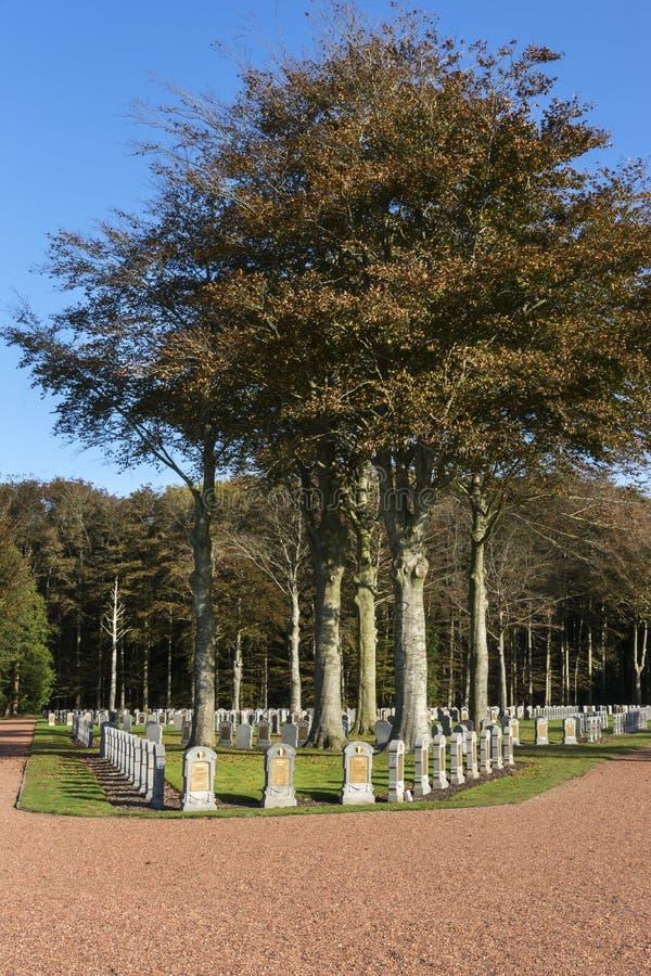 Кладбище бельгийца WW i в Houthulst стоковые изображения rf