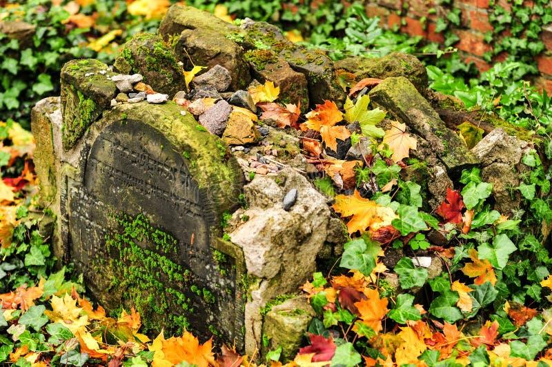 Кладбище Strasse гамбургера Grosse еврейское стоковая фотография rf