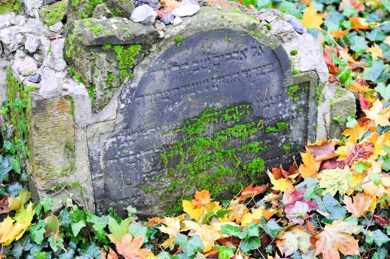 Кладбище Strasse гамбургера Grosse еврейское стоковая фотография