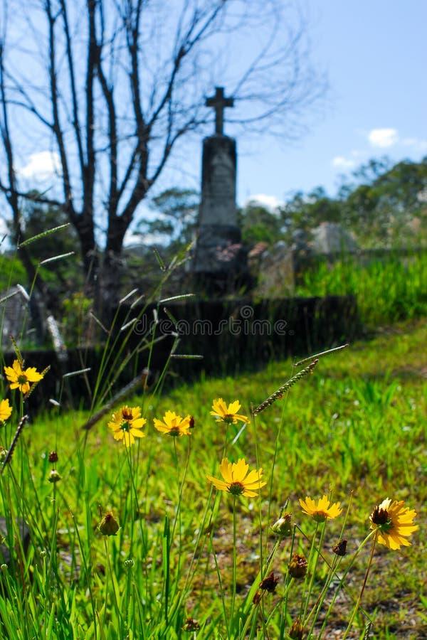 Кладбище Toowong стоковые фото