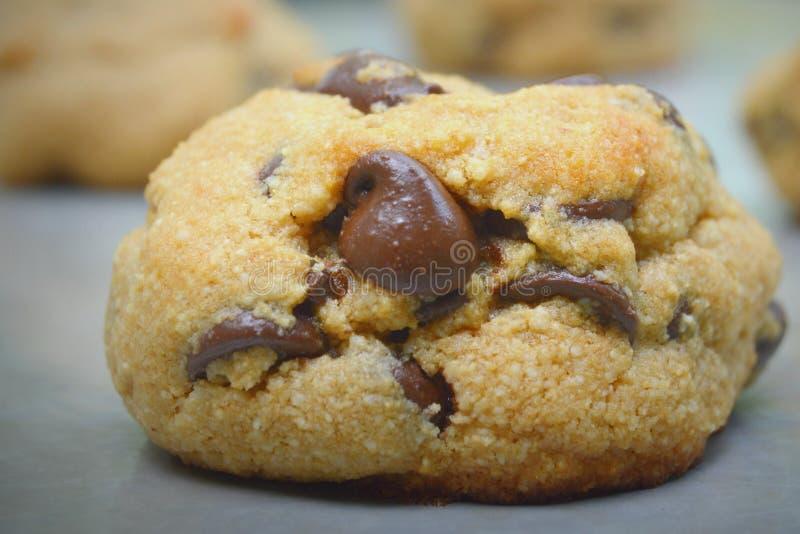 Клейковина печенья обломока шоколада освобождает стоковое изображение