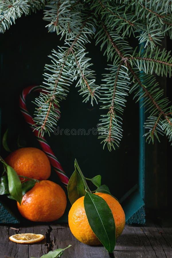 Клементины Tangerines в оформлении рождества стоковое фото rf