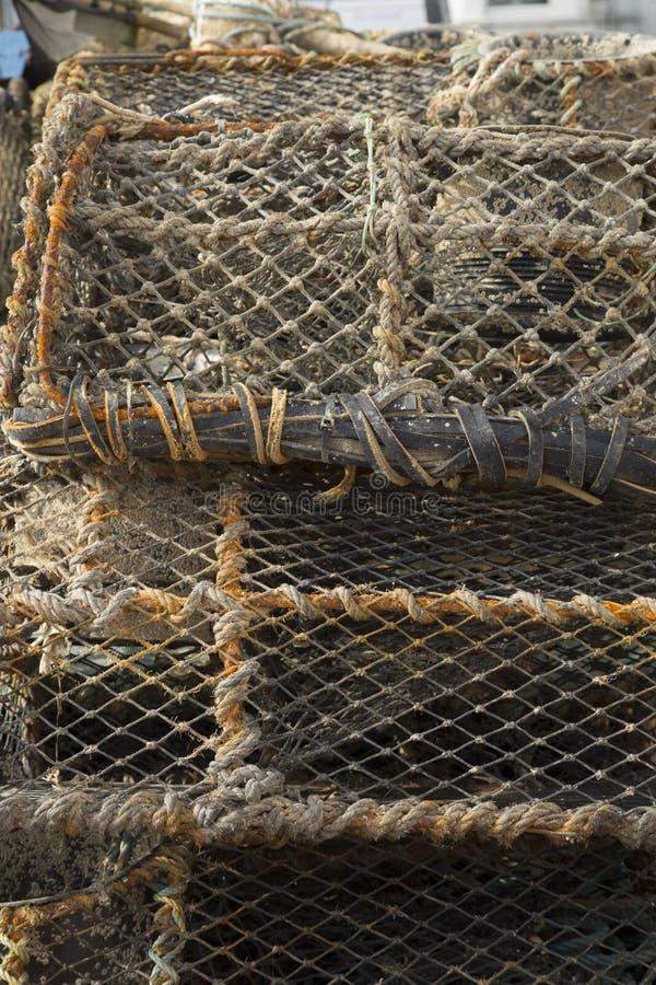 Клетка омара стоковые изображения