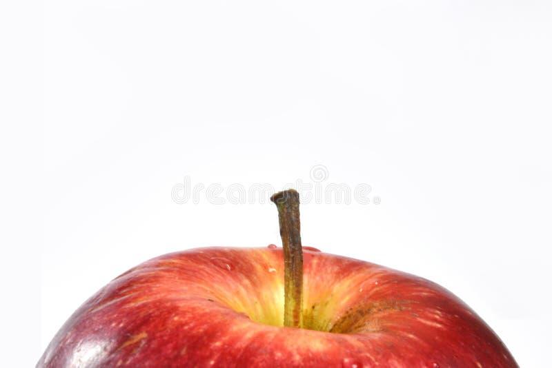 клиппирование яблока содержит цифровую белизну путя сетки иллюстрации градиента стоковая фотография