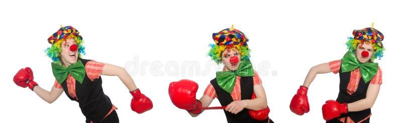 Клоун в различных представлениях изолированный на белизне стоковая фотография rf