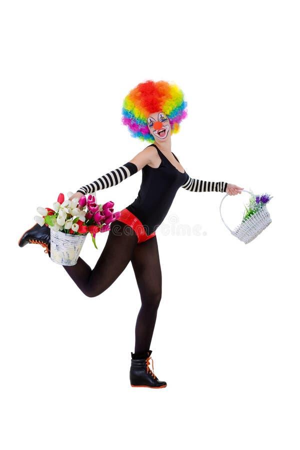 Клоун держит корзину цветков и ведро тюльпанов изолированных на белизне стоковая фотография