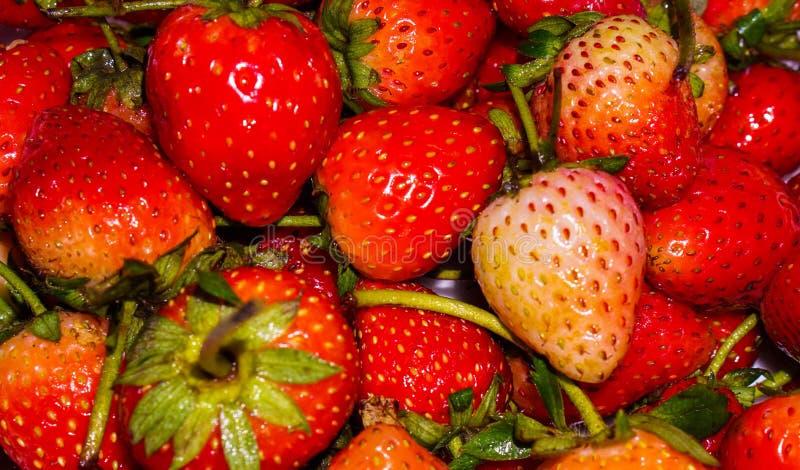 клубники сладостные стоковая фотография rf