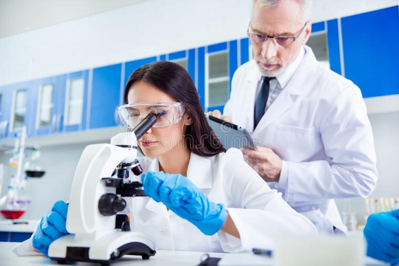 Лаборатория, биотехнология, работа команды Исследователь проверять стоковое фото
