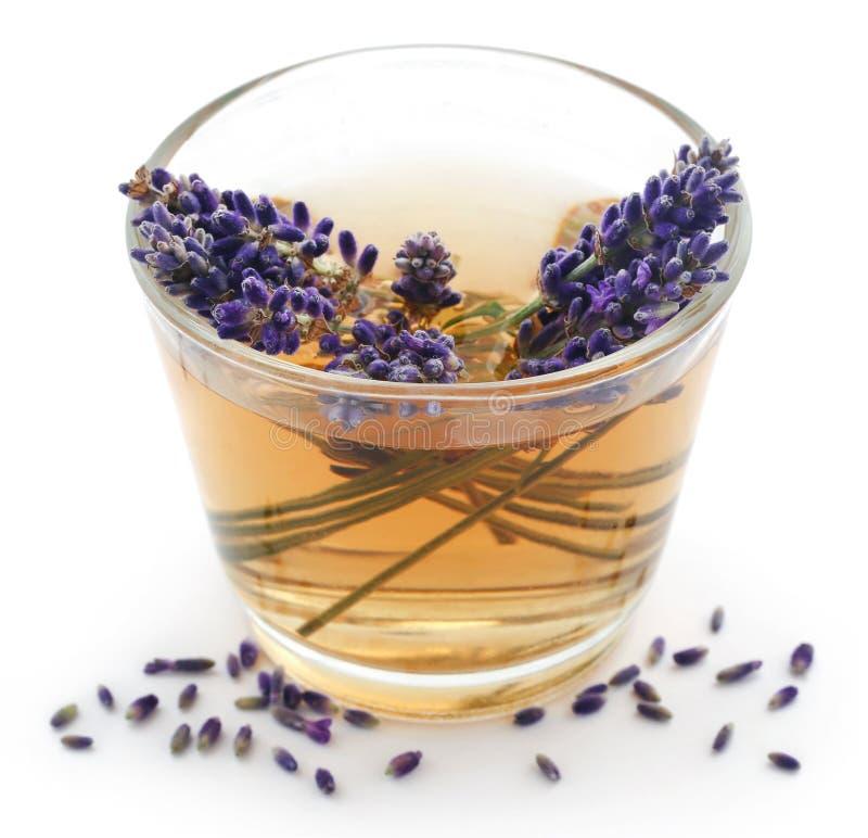 Лавандский чай с цветком стоковые фотографии rf