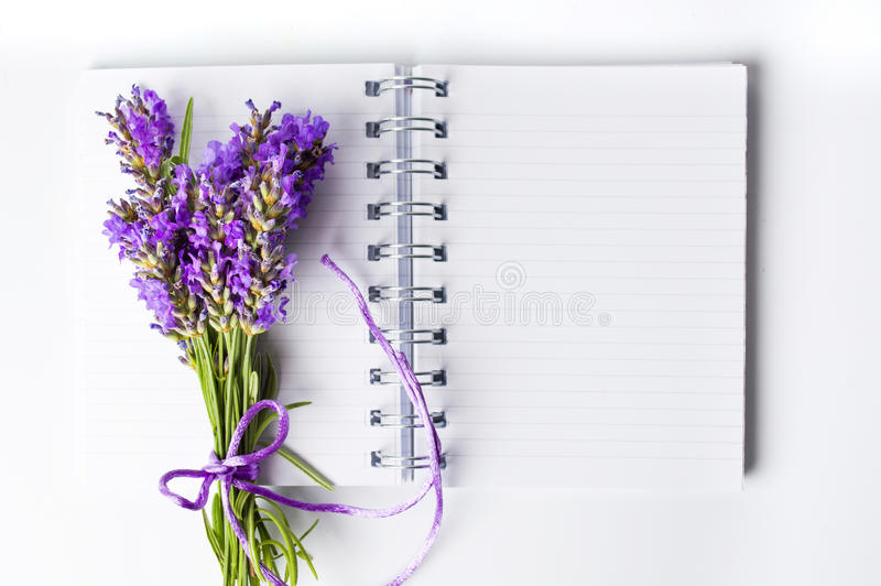 Лаванда цветет букет на открытой тетради стоковое изображение rf