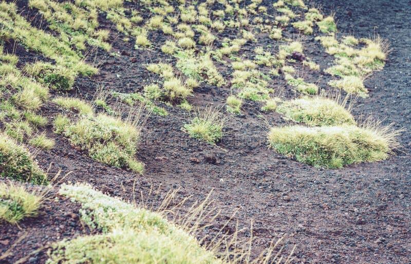 Лава на горе Этна, действующий вулкан на восточном побережье Сицилии, Италии стоковые изображения rf