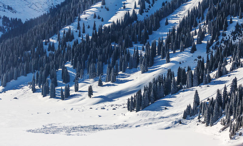 Лавина в горах зимы в Казахстан стоковые изображения rf