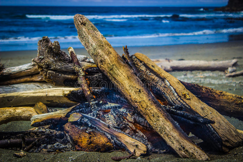 Лагерный костер на пляже Shi Shi с стогами моря в предпосылке стоковое фото rf