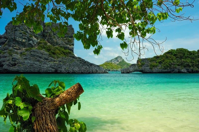 лагуна тропическая стоковое фото rf