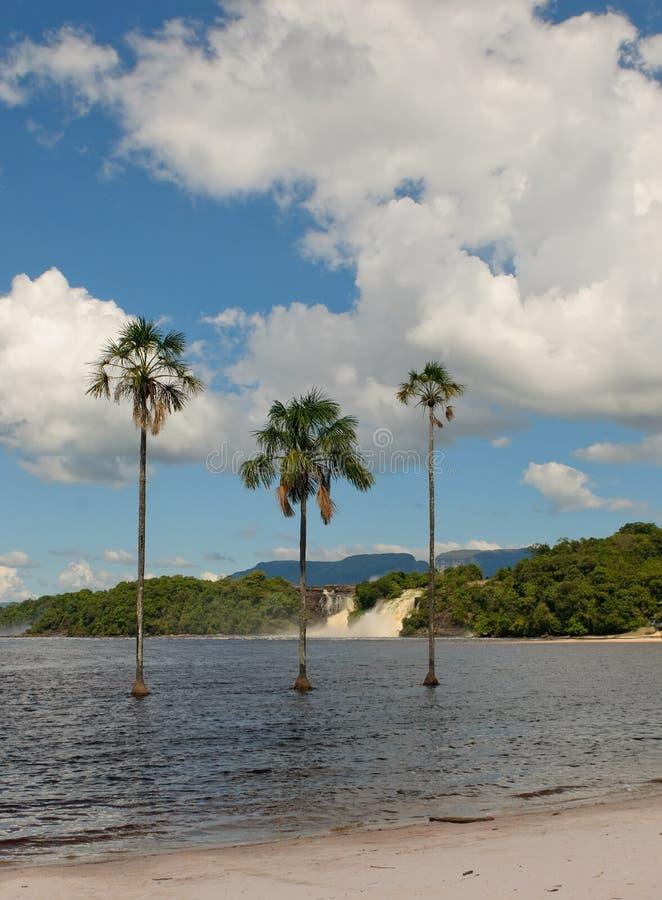 Лагуна Canaima, Венесуэла стоковые изображения rf
