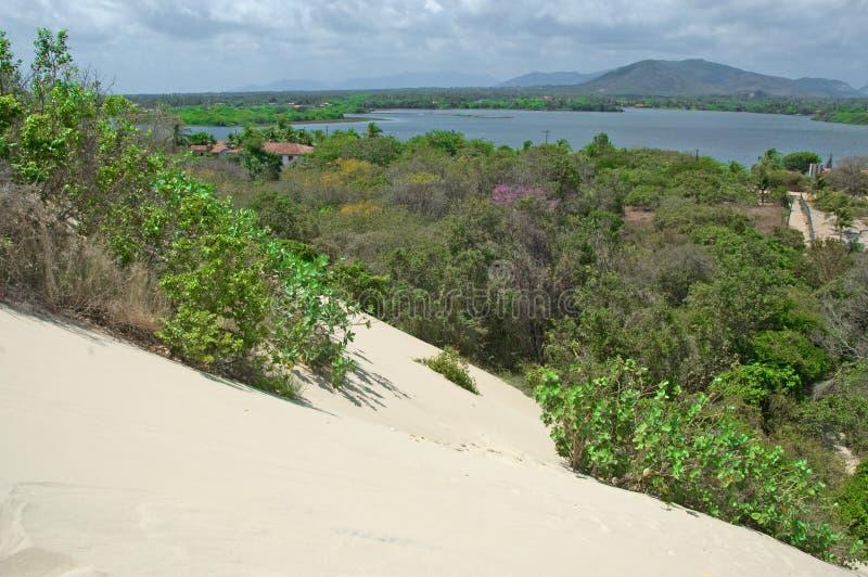 лагуны дюн стоковое фото rf
