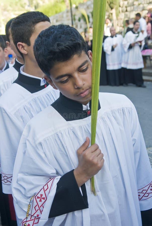 ладонь воскресенье Иерусалима стоковые фото