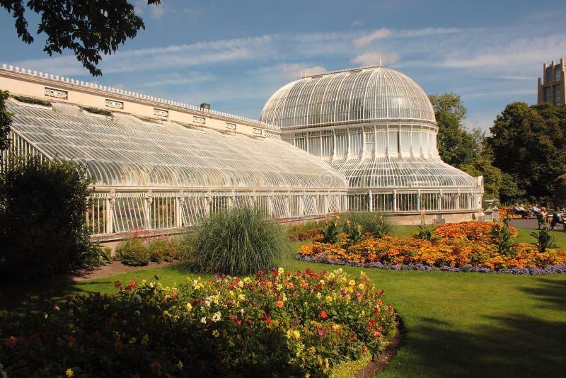 ладонь дома belfast conservatory стоковое изображение rf