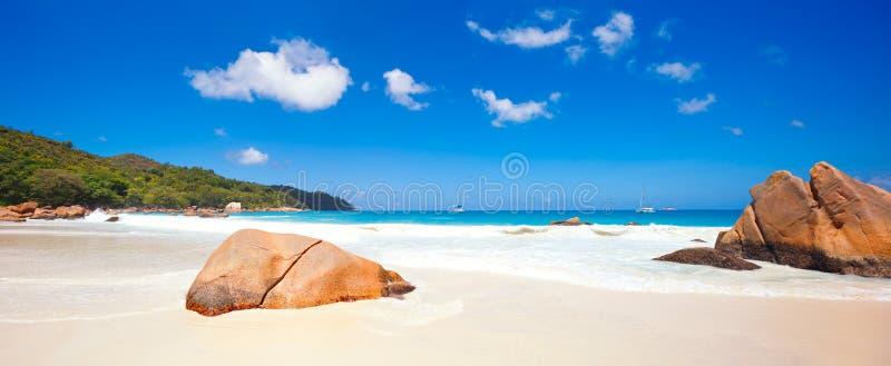 Ладонь и тропическая панорама пляжа Пляж Anse Лациа на острове Praslin, Сейшельских островах стоковые изображения rf