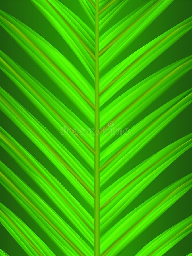 ладонь листьев крупного плана иллюстрация вектора
