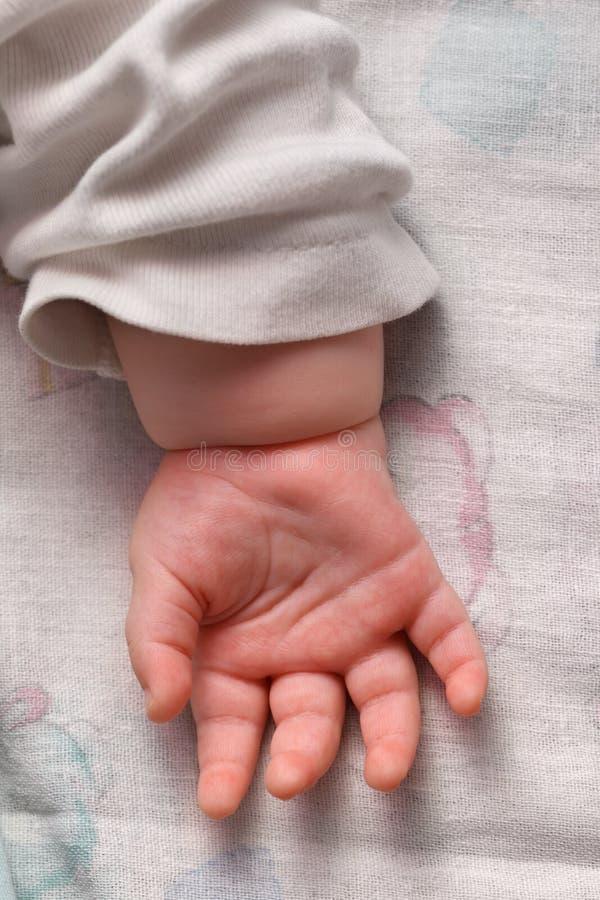 ладонь младенца стоковые изображения rf