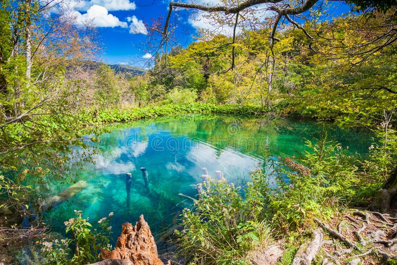 Лазурное озеро в Plitvice стоковая фотография rf