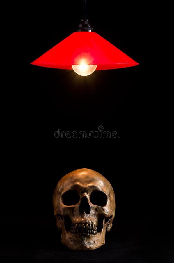 Лампа и череп стоковые фотографии rf