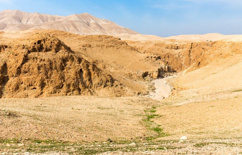 Ландшафта ущелья каньона пустыни взгляд глубокого сценарный, Израиль стоковое изображение rf