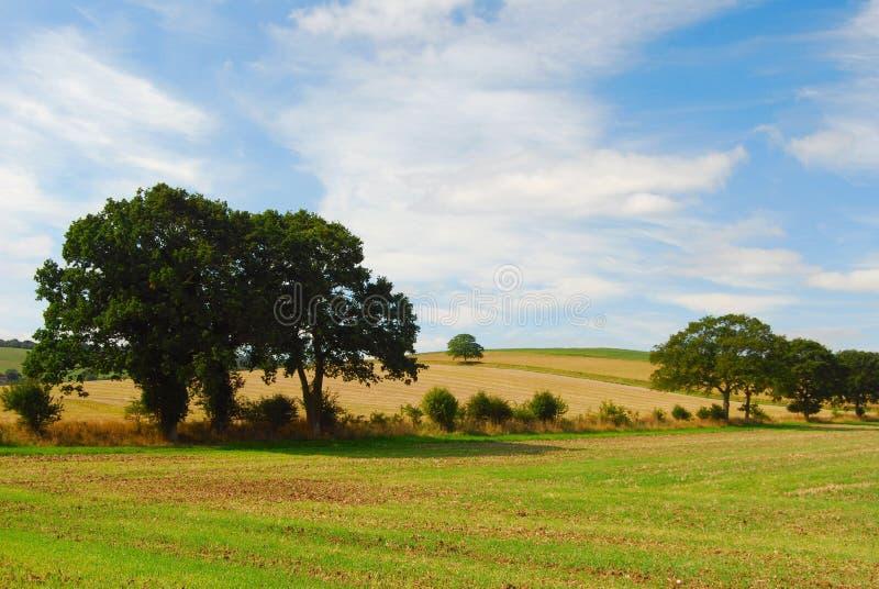 ландшафт английской языка сельской местности стоковые изображения rf
