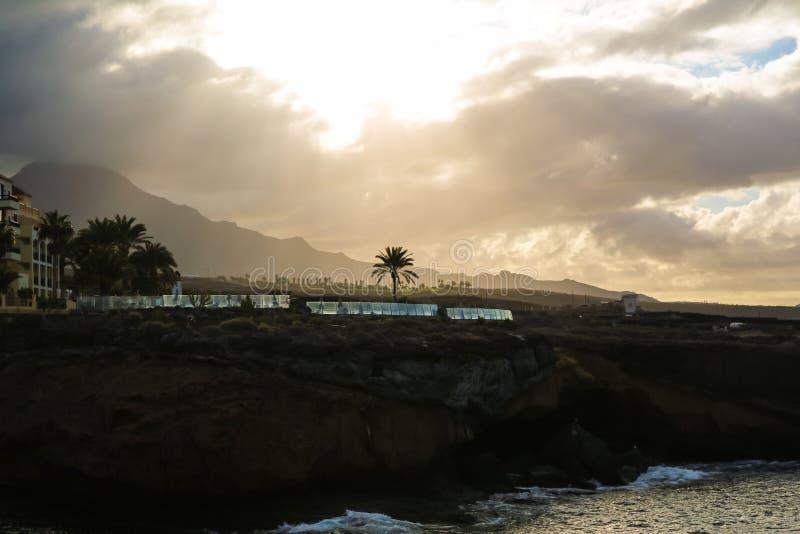 Ландшафт берега Атлантического океана скалистого с одиночными пальмой и облачным небом Мягкий желтый свет утра стоковые фотографии rf
