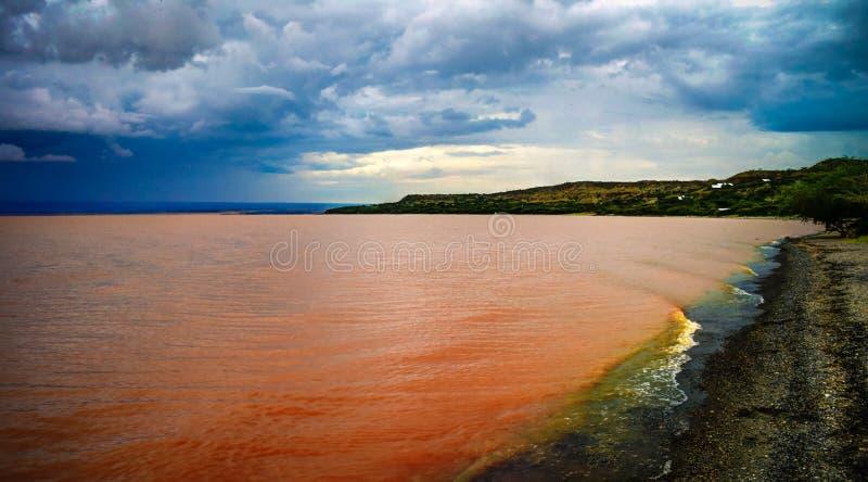 Ландшафт береговой линии озера Langano, Oromia, Эфиопии стоковые изображения