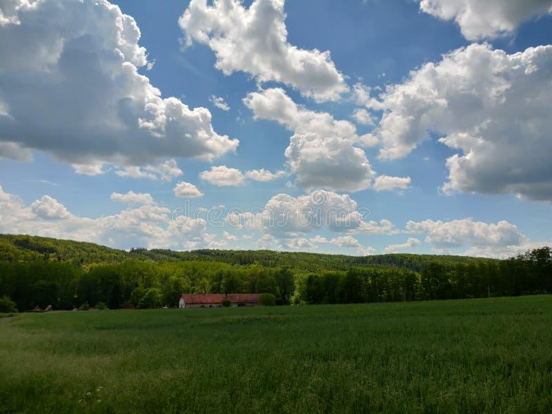 Ландшафт близко Прагой стоковая фотография