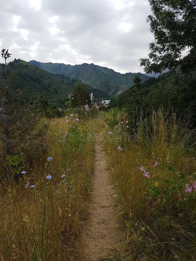 Ландшафт в горах стоковое фото rf