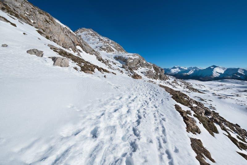 Ландшафт в горах Picos de Европы, Кантабрия зимы, Испания стоковые фото