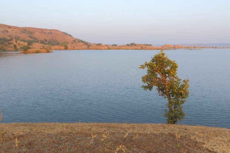 Ландшафт в природе, воде mahi задней, banswara, Раджастхане, Индии стоковая фотография