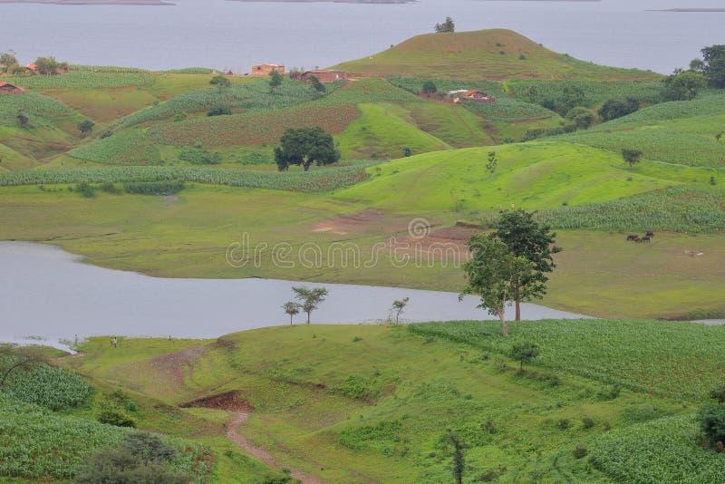 Ландшафт в природе, воде mahi задней, banswara, Раджастхане, Индии стоковые фото
