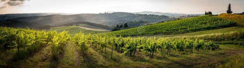 Ландшафт в середине Тосканы стоковое изображение rf